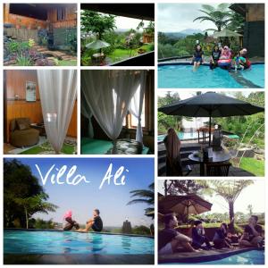 villa-ali